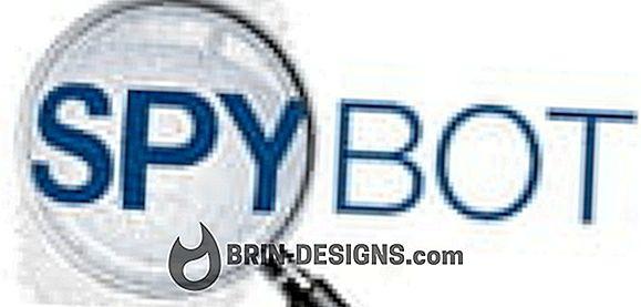 Kategooria mängud:   Spybot S&D - keele seadete muutmine