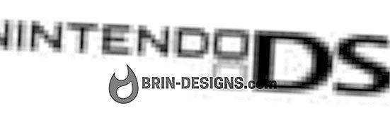 Kategorie Spiele:   Nintendo DS - Fehler 52000
