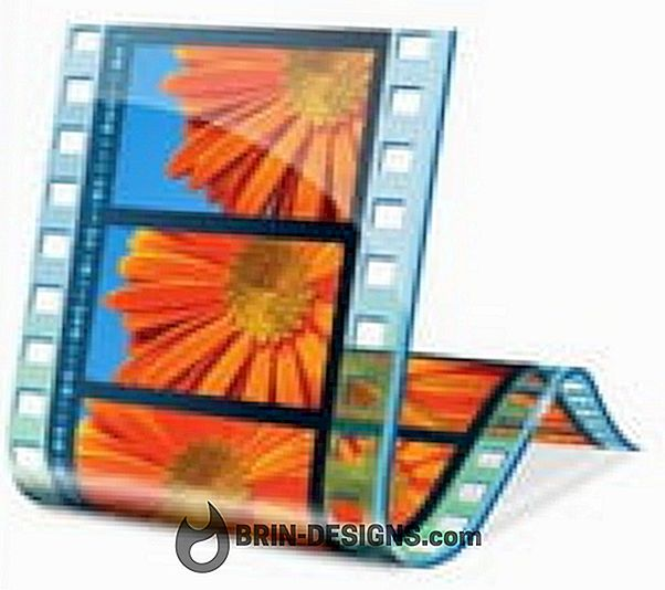 Windows Movie Maker und die Dateien MOD, MOV und VOB