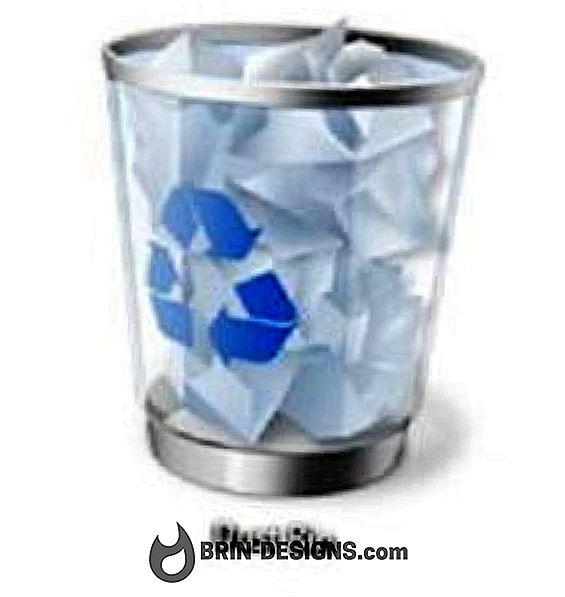"""Kategorija igre:   Kako preimenovati """"Recycle Bin""""?"""