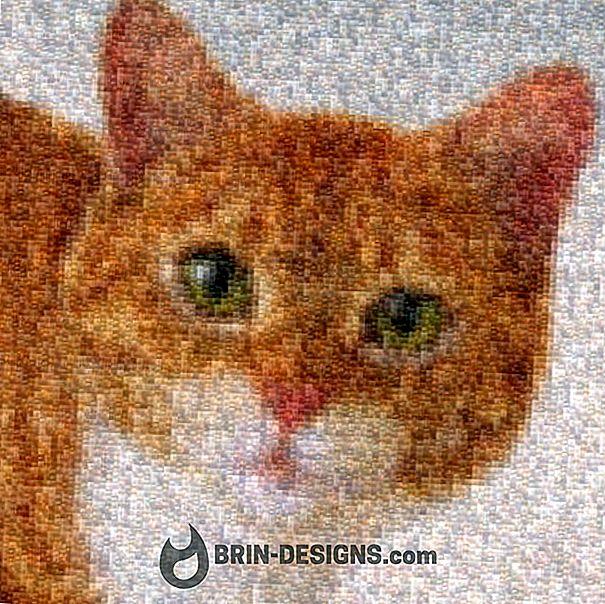 Fotoğraf mozaikleri oluşturmak için ücretsiz yazılım