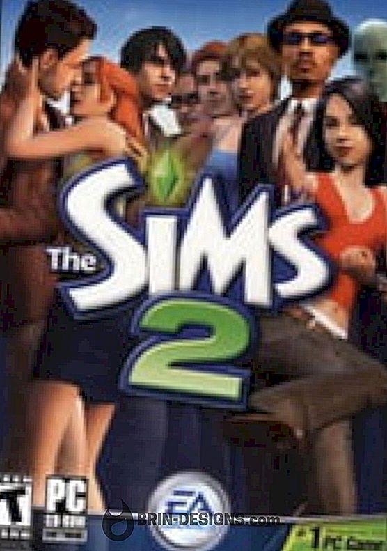 Kategorie Spiele:   Sims 2 - Installieren von benutzerdefinierten Inhalten