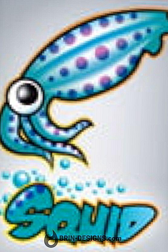 Категория игры:   Установка HTTP прокси-сервера (Squid)