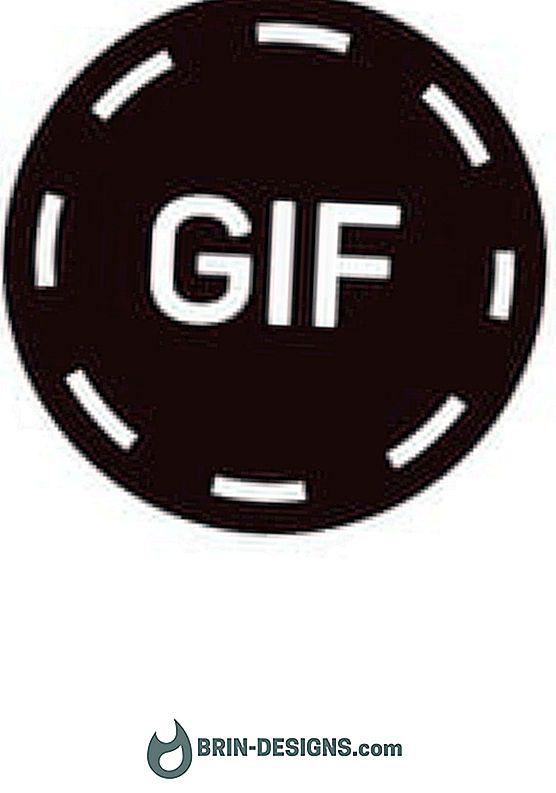Kategorie hry:   Jak vytvořit animovaný GIF