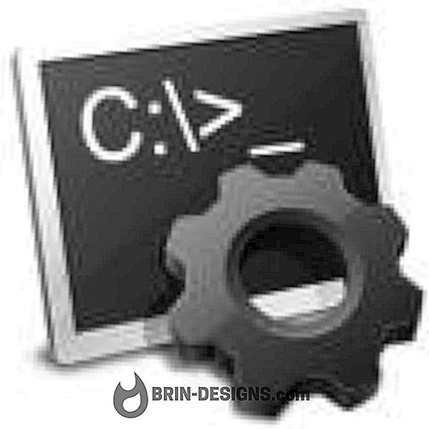 Start og kjør kommandoer fra shell script